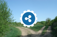 What's Next for Ripple?